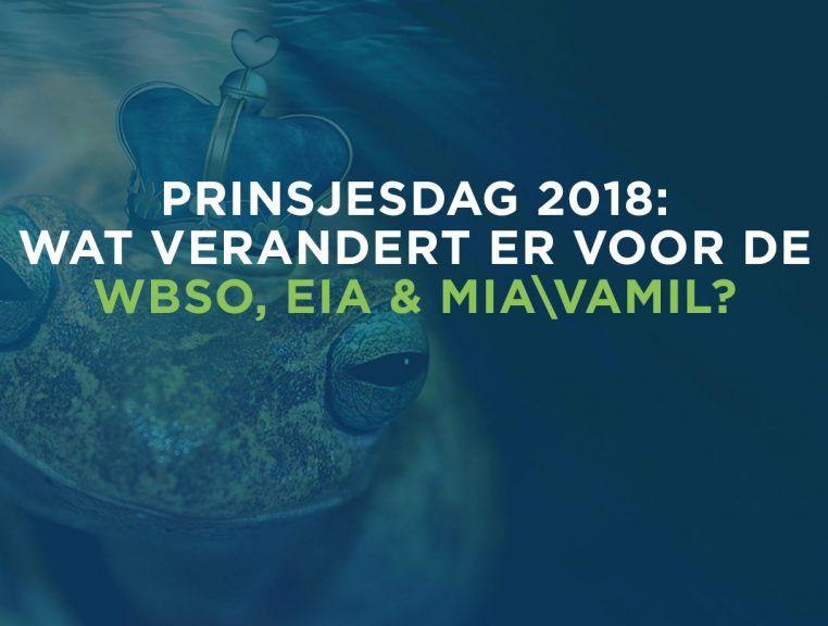 Invloed Prinsjesdag 2018 op de subsidies: WBSO, EIA en MIA\Vamil