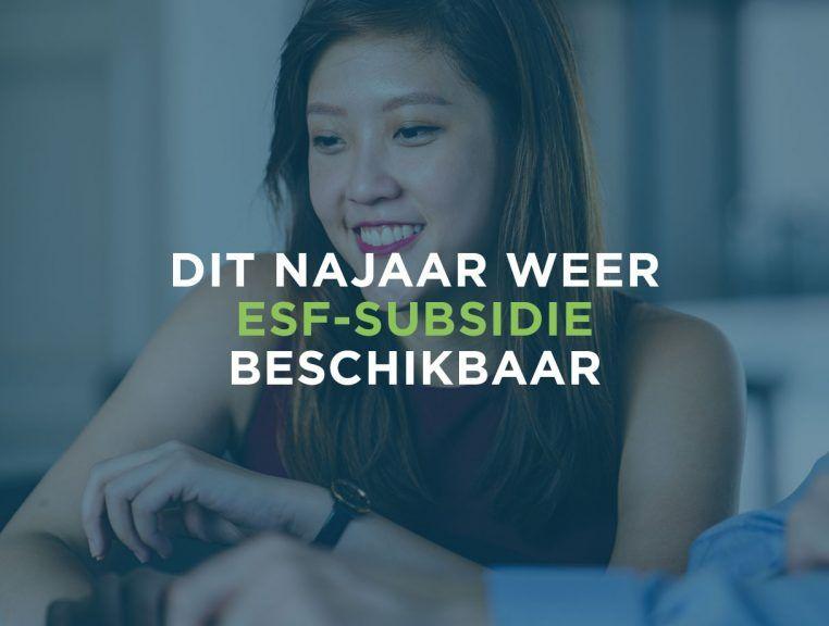 Subsidie voor advies op het gebied van HRM, gezond en veilig werken